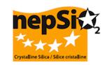 Próximo lanzamiento del Reporte NEPSI 2020