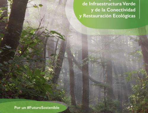 Aprobada la Estrategia Nacional de Infraestructura Verde y de la Conectividad y Restauración Ecológicas, con referencias expresas a la industria extractiva