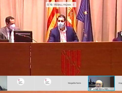 Celebrada la reunión del Consell de la Minería de les Illes Balears 2020