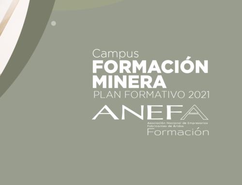Lanzado el Campus FORMACIÓN MINERA- Plan Formativo 2021 de ANEFA