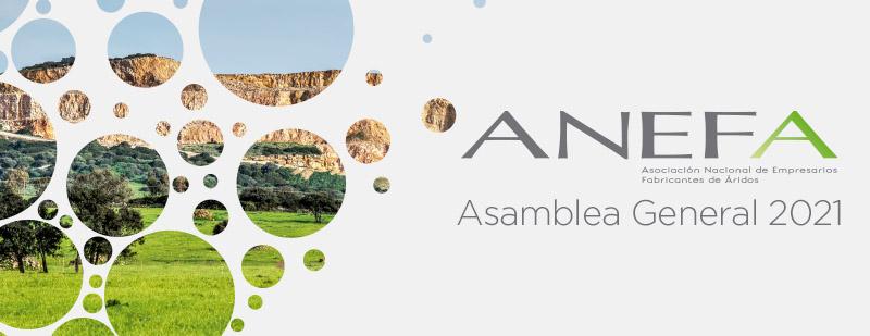 Asamblea General ANEFA